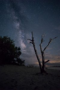 stars milky way shows against a night sky on the bay side of Assateague Maryland