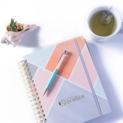 a cup of tea planner fancy pen and succulent inside a shell