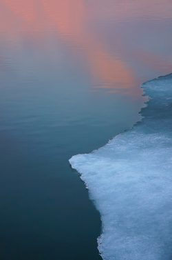 ice forms on the edges of the chesapeake bay at sunset