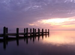 purple and pink sunset at a dock on the chesapeake bay